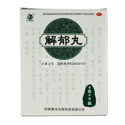康祺 解郁丸 4g*9袋